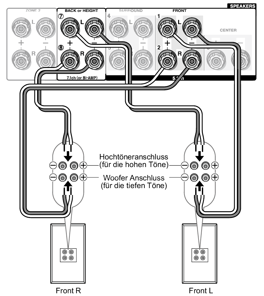 tx nr646 Crossover to Amplifier Wiring Diagram Wiring Diagram for Speaker Connection