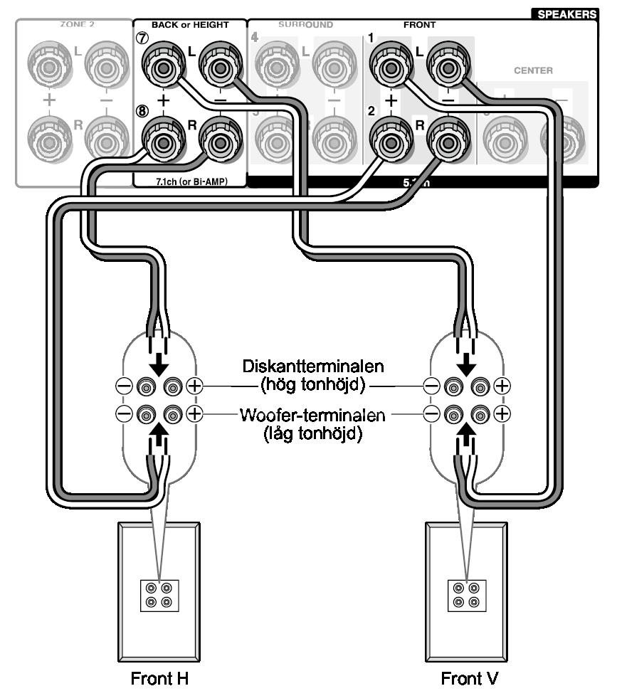 Hur ansluter du 2 subs till en mono amp